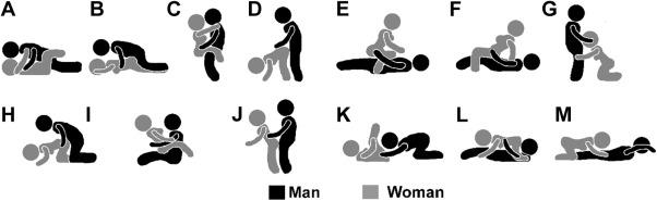 lisbians porn