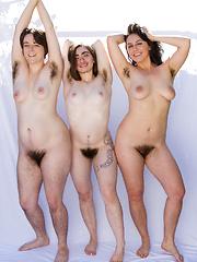 ginger lynn porn gallery