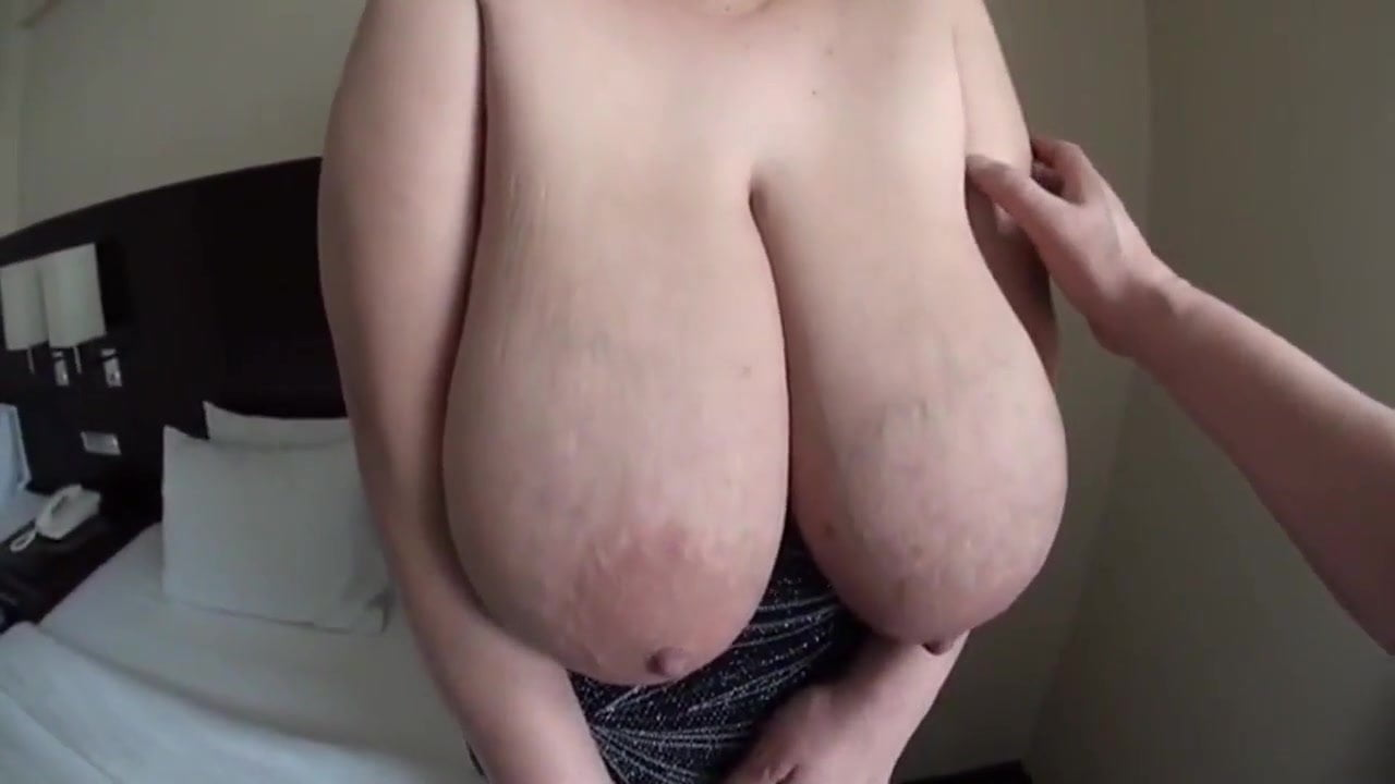 vaginal lips