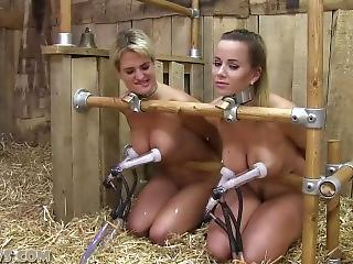 oral porn lesbian
